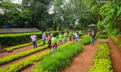 Abertas as inscrições para o programa Casa do Pequeno Jardineiro