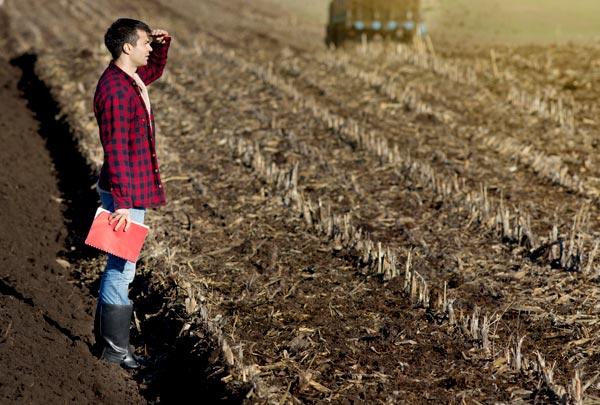 Mais de 3 mil vagas para técnico em agronegócio são abertas pelo Senar