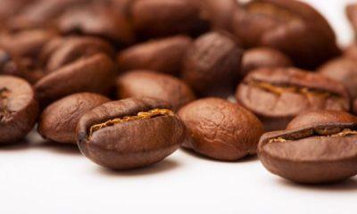 A importância da cafeína na eliminação dos adipócitos