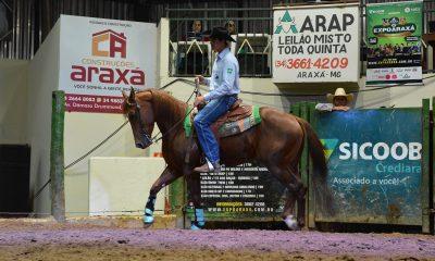 Leilões da EXPOARAXÁ movimentam agronegócio na região