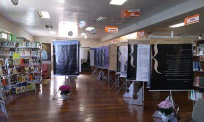Biblioteca Pública Municipal Viriato Correa antecipa Fliaraxá e promove Encontros Literários