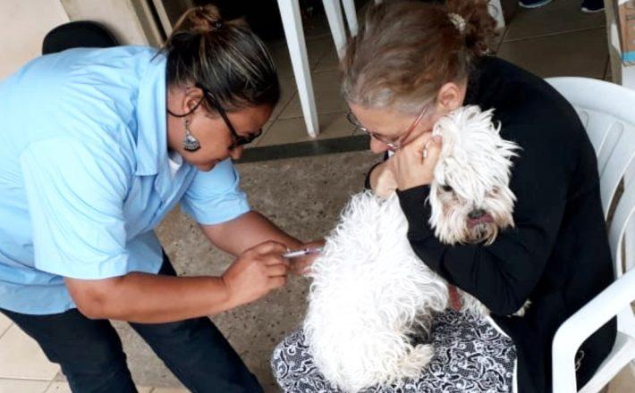 Mais de 15 mil animais são imunizados contra a raiva em Araxá
