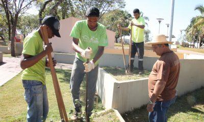 Adolescentes da Casa do Pequeno Jardineiro plantam mudas no Parque do Cristo
