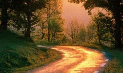 Caminho livre