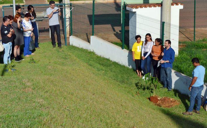 Plantio de Ipê Amarelo marca ações da Campanha Setembro Amarelo em 2018