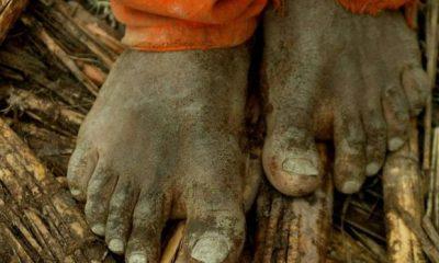 Ministério do Trabalho encontra 1,2 mil em situação semelhante à escravidão este ano