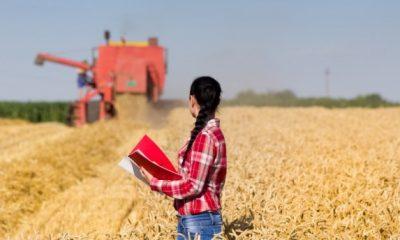 Jovens ganham espaço na gestão do agronegócio e contribuem para o progresso do campo