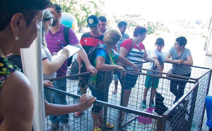 Prefeitura promove Feira de adoção e cães do Canil Municipal ganham uma nova família