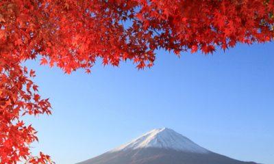 Governo recebe inscrições para intercâmbio profissional de servidores públicos no Japão
