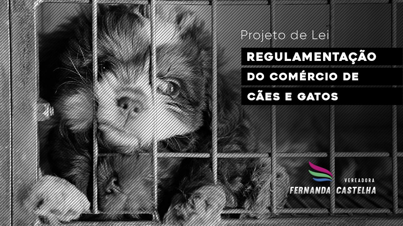Fernanda Castelha propõe regulamentação do comércio de cães e gatos