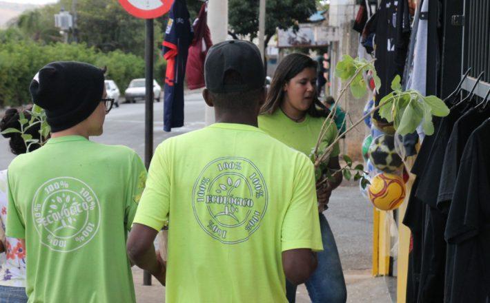 Prefeitura distribuirá mudas de plantas medicinais para a comunidade
