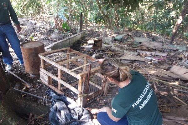 Operação fiscal identifica irregularidades ambientais no Triângulo Mineiro