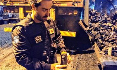 Operação apura transporte de carvão de mata nativa em Minas