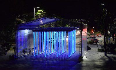 """Exposição interativa """"Seiva"""" é aberta ao público; conheça o conceito da obra"""