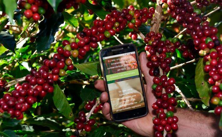 Produtores do Sul de Minas utilizam plataforma digital para exportar café