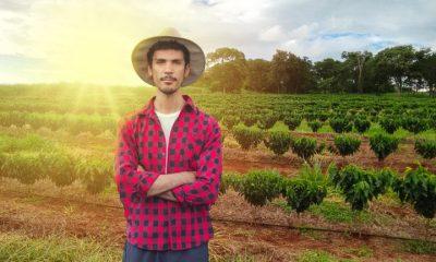 Pronaf terá mais R$ 1 bi para investimento em agricultura familiar
