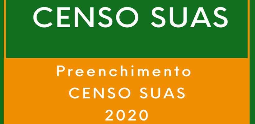 Municípios mineiros já podem preencher o Censo Suas 2020