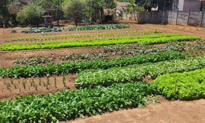 Projetos sociais em Araxá/MG recebem apoio da Satis