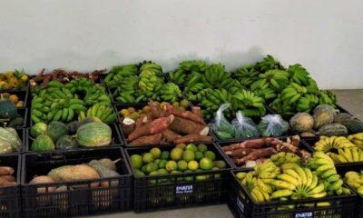 Mantida distribuição de kits de alimentação escolar durante a pandemia