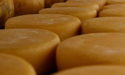 Governador anuncia medidas de fortalecimento da produção de queijo artesanal em Minas Gerais