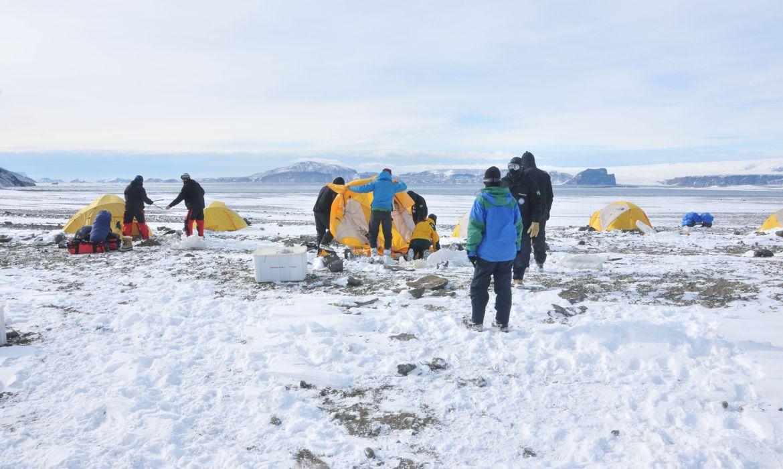 Pesquisadores descobrem incêndios na Antártica há 75 milhões de anos