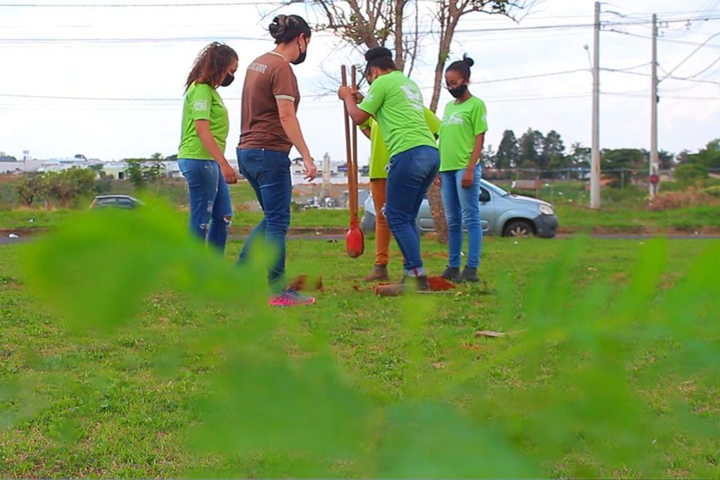Bairro Camuá recebe plantio de mudas nativas